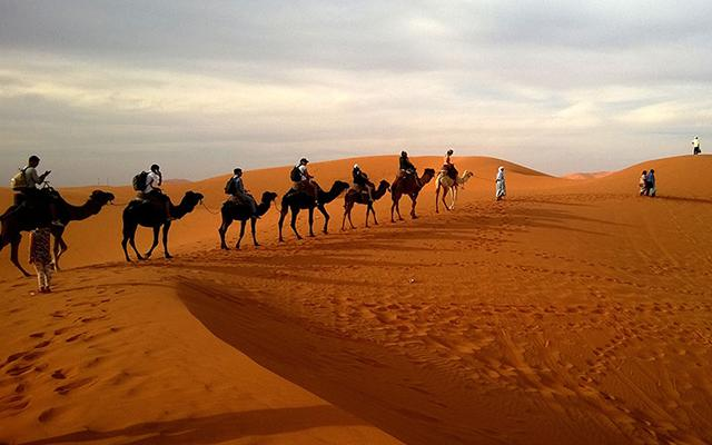 Caravan desert